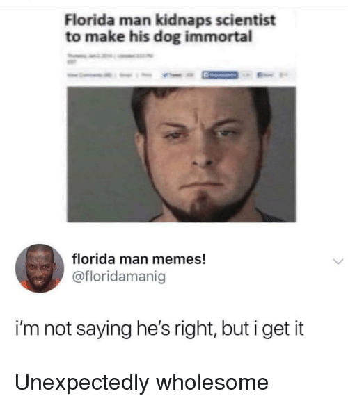 Florida Man, Memes, and Florida: Florida man kidnaps scientist  to make his dog immortal  florida man memes!  @floridamanig  i'm not saying he's right, but i get it Unexpectedly wholesome