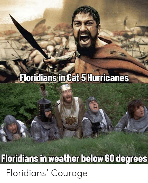Weather, Courage, and Cat: Floridians in Cat 5 Hurricanes  Floridians in weather below 60 degrees Floridians' Courage