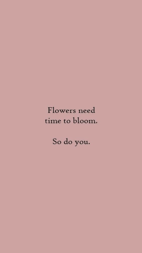 bloom: Flowers need  time to bloom.  So do you.