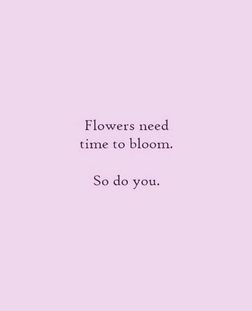 Flowers, Time, and You: Flowers need  time to bloom.  So do you.
