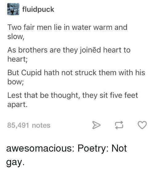 Tumblr, Cupid, and Blog: fluidpuck  Two fair men lie in water warm and  slow,  As brothers are they joinëd heart to  heart;  But Cupid hath not struck them with his  bow;  Lest that be thought, they sit five feet  apart.  85,491 notes awesomacious:  Poetry: Not gay.