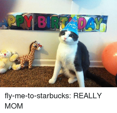 Starbucks, Target, and Tumblr: fly-me-to-starbucks: REALLY MOM