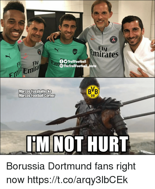 Memes, Borussia Dortmund, and 🤖: Fly  mirates  TrollFootball  Ire  The TrollFootball Insto  EEmia  BB  Marcos Fussballecke  09  IM NOT HURT Borussia Dortmund fans right now https://t.co/arqy3lbCEk