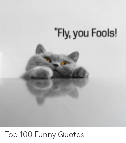 Anaconda, Funny, and Quotes: Fly,you Fools! Top 100 Funny Quotes