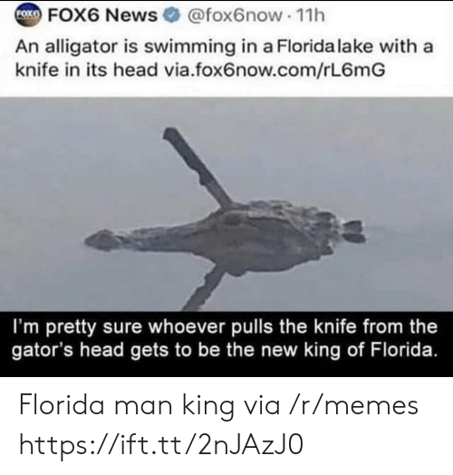 Swimming: FOK  FOX6 News @fox6now 11h  An alligator is swimming in a Florida lake with a  knife in its head via.fox6now.com/rL6mG  I'm pretty sure whoever pulls the knife from the  gator's head gets to be the new king of Florida. Florida man king via /r/memes https://ift.tt/2nJAzJ0