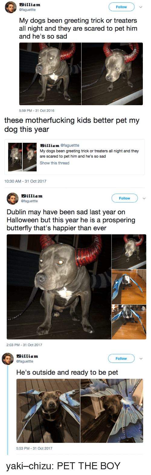 dublin: Follow  @faguettte  My dogs been greeting trick or treaters  all night and they are scared to pet him  5:59 PM-31 Oct 2016   these motherfucking kids better pet my  dog this year  William @faguettte  My dogs been greeting trick or treaters all night and they  are scared to pet him and he's so sad  Show this thread  10:30 AM-31 Oct 2017   Follow  @faguettte  Dublin may have been sad last year on  Halloween but this year he is a prospering  butterfly that's happier than ever  2:03 PM-31 Oct 2017   Follow  @faguettte  5:53 PM 31 Oct 2017 yaki–chizu: PET THE BOY