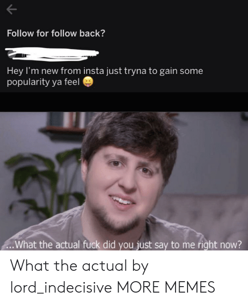 Did You Just Say: Follow for follow back?  Hey I'm new from insta just tryna to gain some  popularity ya feel  .What the actual fuck did you just say to me right now? What the actual by lord_indecisive MORE MEMES