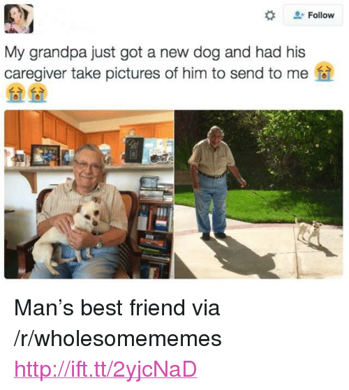 "Best Friend, Grandpa, and Best: Follow  My grandpa just got a new dog and had his  caregiver take pictures of him to send to me  么>  么> <p>Man's best friend via /r/wholesomememes <a href=""http://ift.tt/2yjcNaD"">http://ift.tt/2yjcNaD</a></p>"