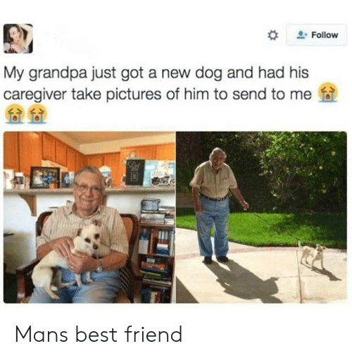 Caregiver: Follow  My grandpa just got a new dog and had his  caregiver take pictures of him to send to me f Mans best friend