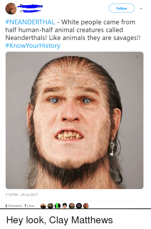Animals, Nfl, and White People: Follow  #NEANDERTHAL-White people came from  half human-half animal creatures called  Neanderthals! Like animals they are savages!!  #KnowYourH istory  7:19 PM-29 Jul 2017  2 Retweets 7 Likes