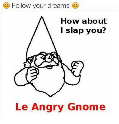 Follow Your Dreams How About I Slap You Lee Angry Gnome Dank Meme