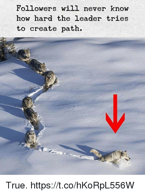True, Never, and How: Followers will never know  how hard the leader tries  to create path. True. https://t.co/hKoRpL556W
