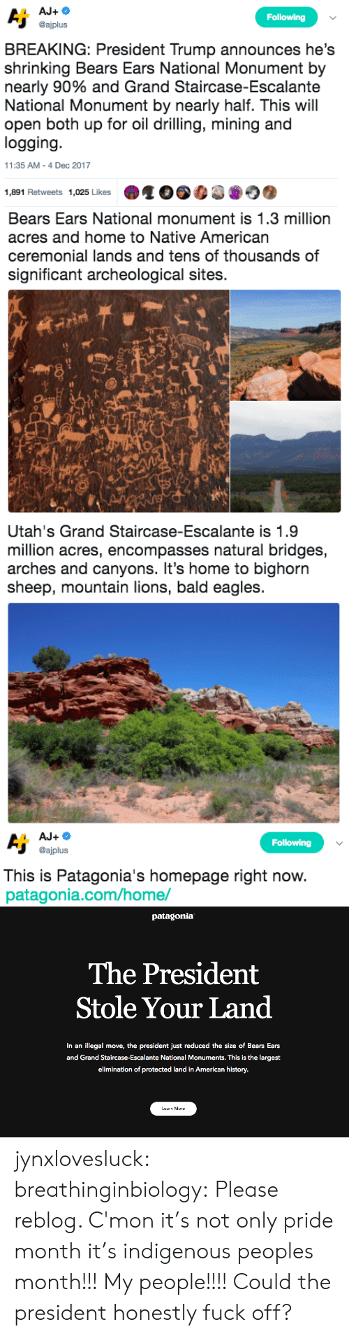 drilling: Following  @ajplus  BREAKING: President Trump announces he's  shrinking Bears Ears National Monument by  nearly 90% and Grand Staircase-Escalante  National Monument by nearly half. This will  open both up for oil drilling, mining and  logging  11:35 AM-4 Dec 2017  1,891 Retweets 1,025 Likes   Bears Ears National monument is 1.3 million  acres and home to Native American  ceremonial lands and tens of thousands of  significant archeological sites.  sh   Utah's Grand Staircase-Escalante is 1.9  million acres, encompasses natural bridges,  arches and canyons. It's home to bighorn  sheep, mountain lions, bald eagles   Following  @ajplus  This is Patagonia's homepage right now  patagonia.com/home/   patagonia  The President  Stole Your Land  In an illegal move, the president just reduced the size of Bears Ears  and Grand Staircase-Escalante National Monuments. This is the largest  elimination of protected land in American history.  Learn More jynxlovesluck:  breathinginbiology: Please reblog.   C'mon it's not only pride month it's indigenous peoples month!!! My people!!!! Could the president honestly fuck off?