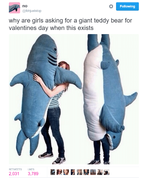 Why Are Girls: Following  no  @tbhjuststop  why are girls asking for a giant teddy bear for  valentines day when this exists  RETWEETS LIKES  2,031 3,789