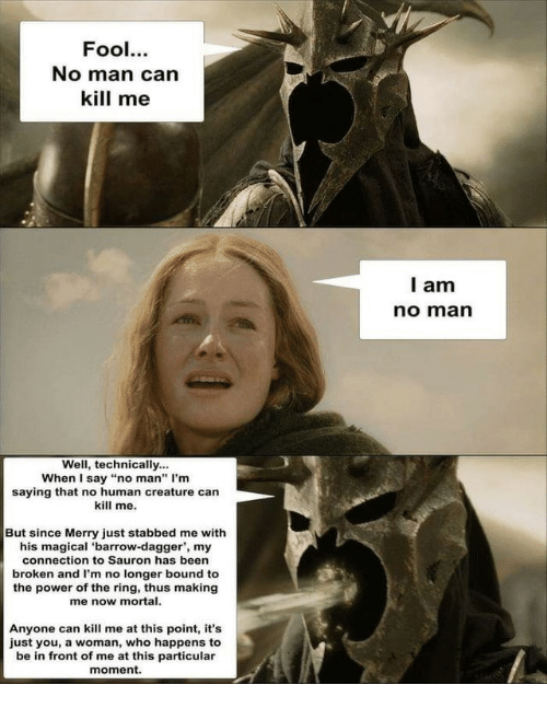 """sauron: Fool.  No man can  kill me  l am  no marn  Well, technically...  When I say """"no man"""" I'm  saying that no human creature can  kill me.  But since Merry just stabbed me with  his magical 'barrow-dagger', my  connection to Sauron has been  broken and I'm no longer bound to  the power of the ring, thus making  me now mortal.  Anyone can kill me at this point, it's  just you, a woman, who happens to  be in front of me at this particular  moment."""