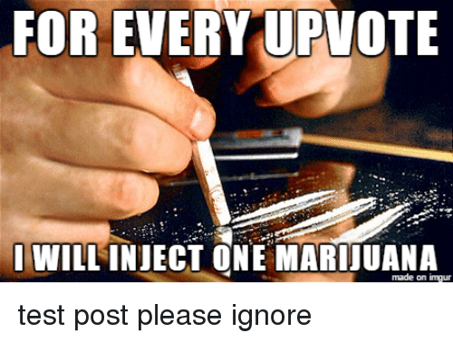 Friends, Ignorant, and Test: FOR EVERY UPVOTE  I WILLINJECT ONE made on inngur test post please ignore