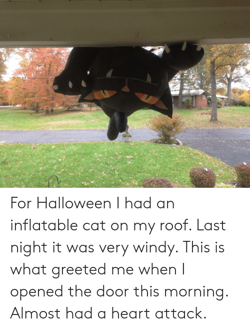 Halloween, Heart, and Cat: For Halloween I had an inflatable cat on my roof. Last night it was very windy. This is what greeted me when I opened the door this morning. Almost had a heart attack.