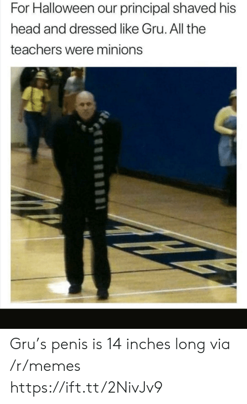 His Head: For Halloween our principal shaved his  head and dressed like Gru. All the  teachers were minions Gru's penis is 14 inches long via /r/memes https://ift.tt/2NivJv9