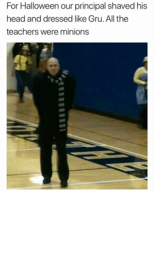 His Head: For Halloween our principal shaved his  head and dressed like Gru. All the  teachers were minions Now that's how you win Halloween by ashutosh__badetia MORE MEMES