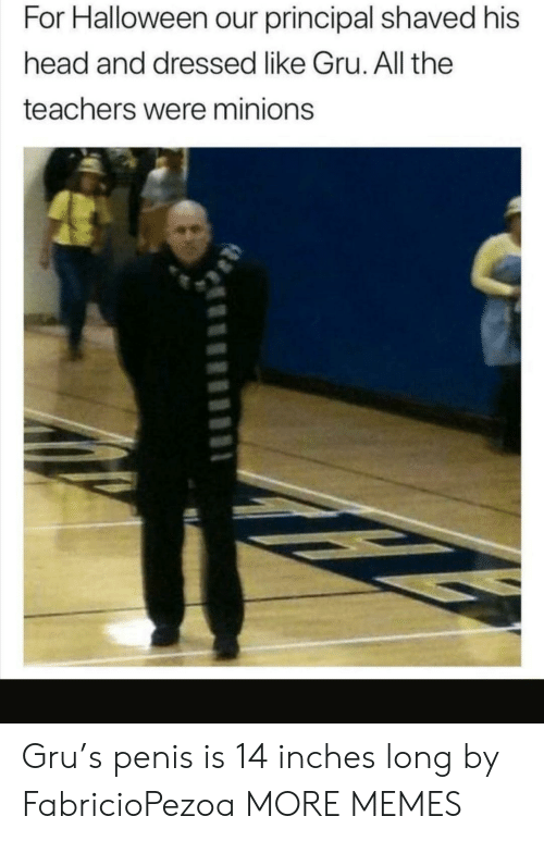 His Head: For Halloween our principal shaved his  head and dressed like Gru. All the  teachers were minions Gru's penis is 14 inches long by FabricioPezoa MORE MEMES