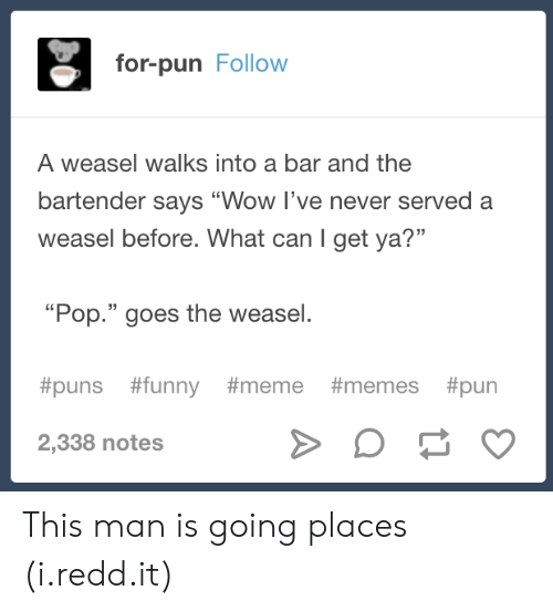 "Funny, Meme, and Memes: for-pun Follow  A weasel walks into a bar and the  bartender says ""Wow I've never served a  weasel before. What can I get ya?""  13  ""Pop."" goes the weasel.  #puns #funny #meme #memes #pun  2,338 notes This man is going places (i.redd.it)"