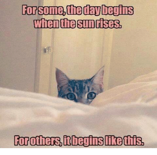 For, Begins, and Some: For some,theday begins