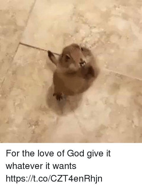 God, Love, and Relatable: For the love of God give it whatever it wants https://t.co/CZT4enRhjn