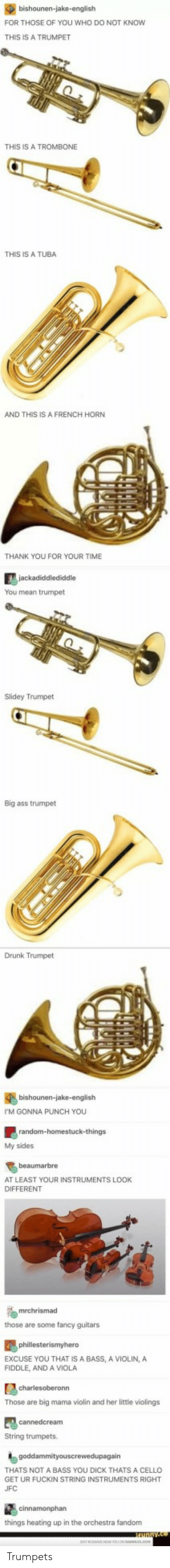 My Sides: FOR THOSE OF YOU WHO DO NOT KNOW  THIS IS A TRUMPET  THIS IS A TROMBONE  THIS IS A TUBA  AND THIS IS A FRENCH HORN  THANK YOU FOR YOUR TIME  You mean trumpet  Slidey Trumpet  Big ass trumpet  Drunk Trumpet  bishounen-jake-english  M GONNA PUNCH YOU  My sides  beaumarbre  AT LEAST YOUR INSTRUMENTS LOOK  DIFFERENT  those are some fancy guitars  EXCUSE YOU THAT IS A BASS, A VIOLIN, A  FIDDLE, AND A VIOLA  Those are big mama violin and her little violings  String trumpets.  THATS NOT A BASS YOU DICK THATS A CELLO  GET UR FUCKIN STRING INSTRUMENTS RIGHT  UFC  things heating up in the orchestra fandonm Trumpets