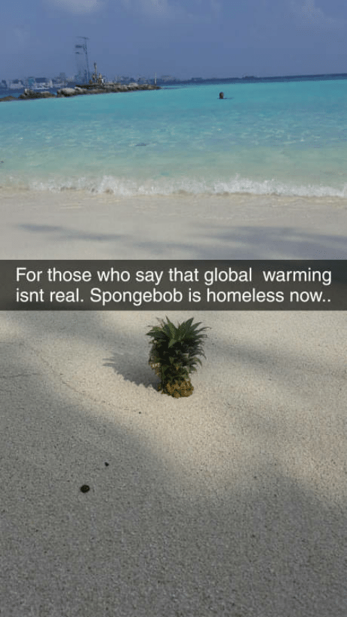 Global Warming, Homeless, and SpongeBob: For those who say that global warming  isnt real. Spongebob is homeless now..