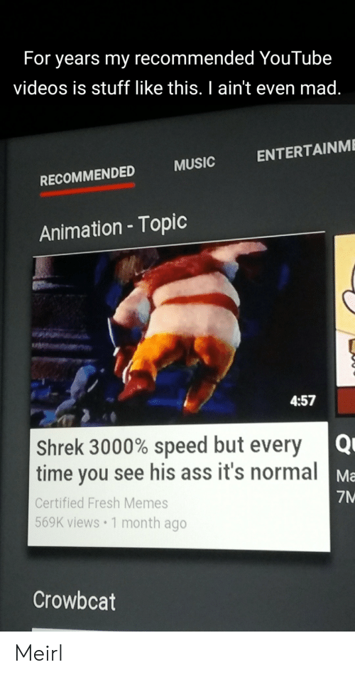 Animation: For years my recommended YouTube  videos is stuff like this. I ain't even mad.  ENTERTAINME  MUSIC  RECOMMENDED  Animation - Topic  4:57  Shrek 3000% speed but every  time you see his ass it's normal  Ma  7M  Certified Fresh Memes  569K views 1 month ago  Crowbcat Meirl