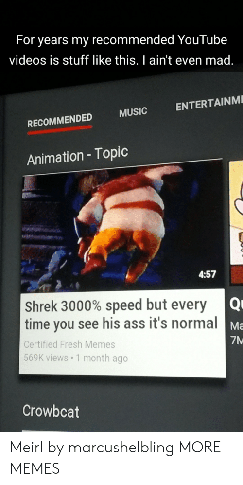 Animation: For years my recommended YouTube  videos is stuff like this. I ain't even mad.  ENTERTAINME  MUSIC  RECOMMENDED  Animation - Topic  4:57  Shrek 3000% speed but every Q  time you see his ass it's normal Ma  Certified Fresh Memes  7M  569K views 1 month ago  Crowbcat Meirl by marcushelbling MORE MEMES