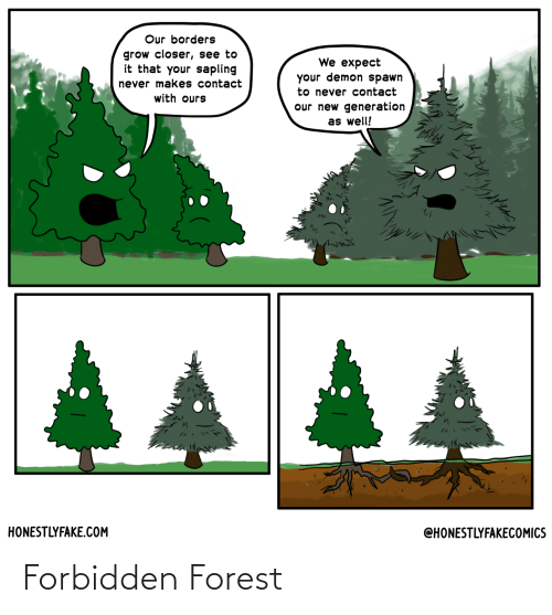 forest: Forbidden Forest