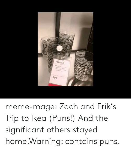 Ikea, Meme, and Puns: FOREBILD  99c meme-mage:    Zach and Erik's Trip to Ikea (Puns!)     And the significant others stayed home.Warning: contains puns.