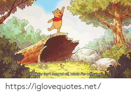 Forever, Net, and All: Forever isn't longrat all, when Pmwith you https://iglovequotes.net/