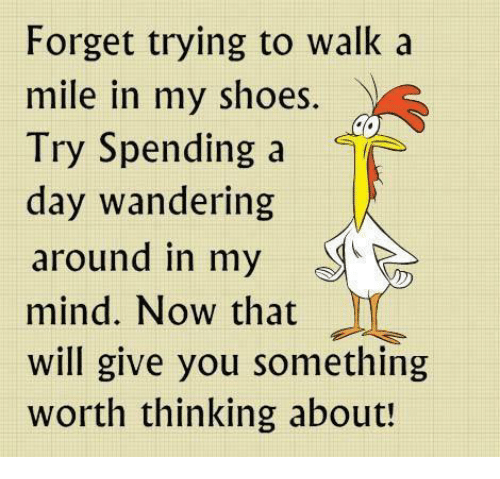 in-my-shoes: Forget trying to walk a  mile in my shoes.  Try Spending a  day wandering  around in my  mind. Now that  will give you something  Worth thinking about!