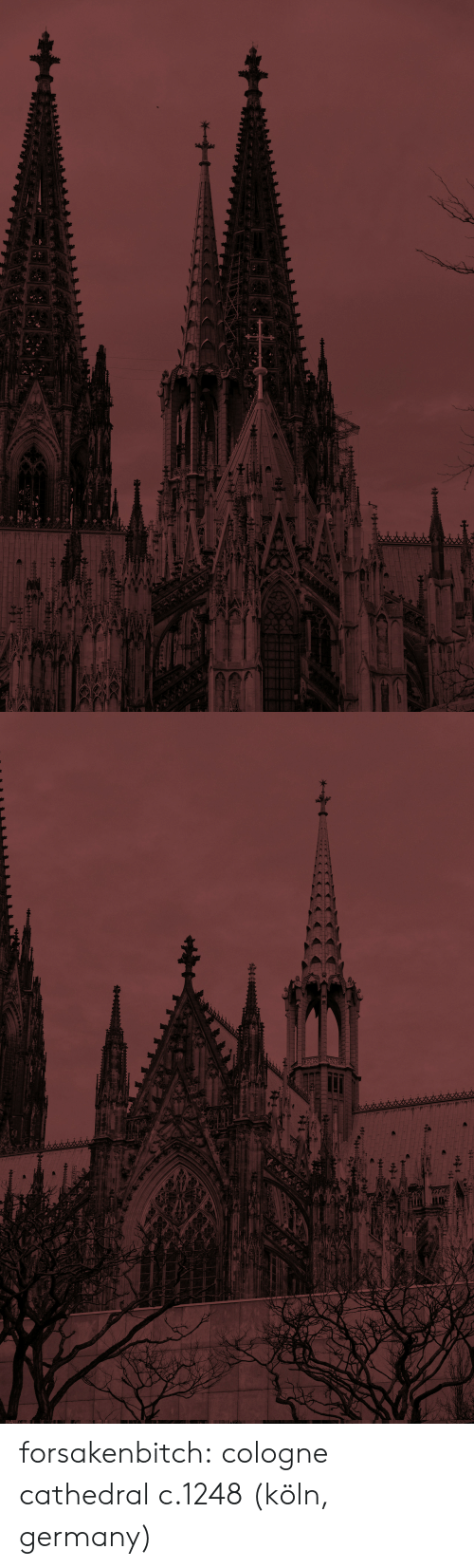 Tumblr, Blog, and Chat: forsakenbitch: cologne cathedral c.1248 (köln, germany)