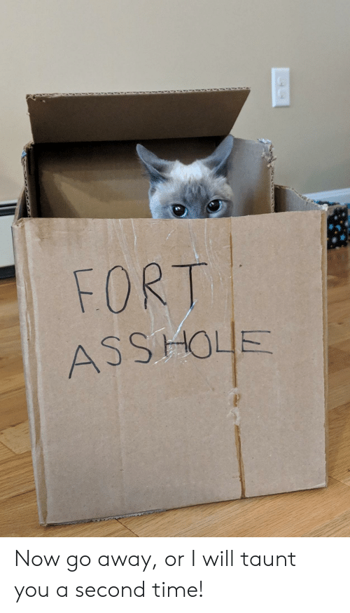 Ass, Time, and Hole: FORT  ASS HOLE Now go away, or I will taunt you a second time!