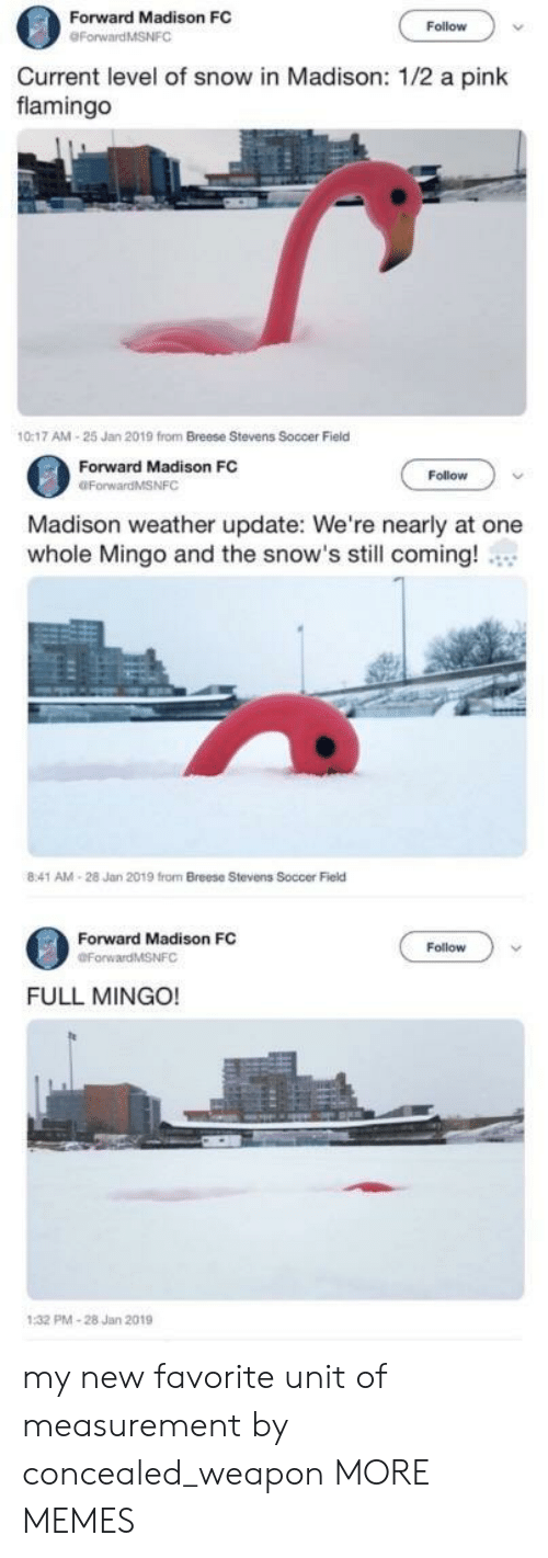 a pink: Forward Madison FC  Follow  Current level of snow in Madison: 1/2 a pink  flamingo  0:17 AM-25 Jan 2019 from Breese Stevens Soccer Field  Forward Madison FC  OForwardMSNFC  Follow  Madison weather update: We're nearly at one  whole Mingo and the snow's still coming!  8:41 AM-28 Jan 2019 from Breese Stevens Soccer Field  Forward Madison FC  Follow  FULL MINGO!  PMA-28 Jan 2019 my new favorite unit of measurement by concealed_weapon MORE MEMES