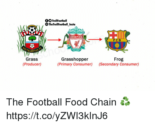 Best The Food Chain Memes