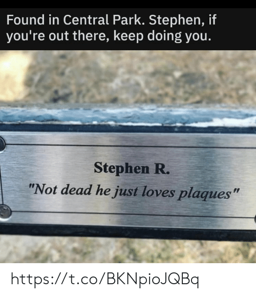 "Stephen: Found in Central Park. Stephen, if  you're out there, keep doing you.  Stephen R.  ""Not dead he just loves plaques"" https://t.co/BKNpioJQBq"