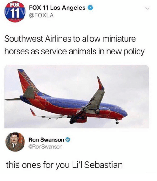 Southwest: FOX  FOX 11 Los Angeles  @FOXLA  Southwest Airlines to allow miniature  horses as service animals in new policy  Ron Swanson  @RonSwanson  this ones for you Li'l Sebastian