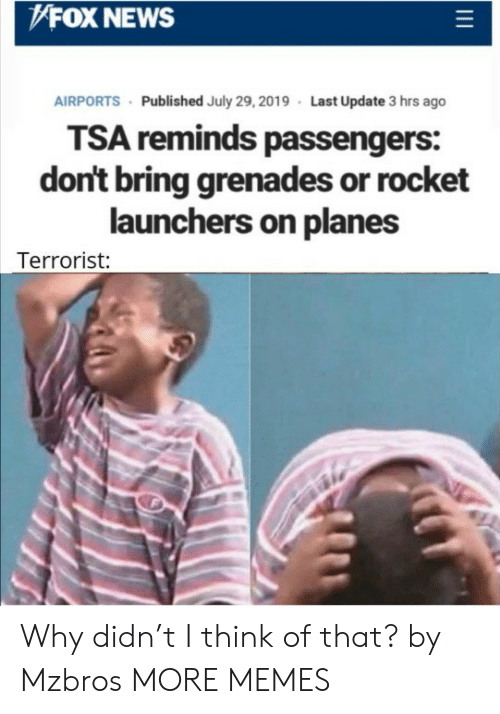 Passengers: FOX NEWS  AIRPORTS Published July 29, 2019 Last Update 3 hrs ago  TSA reminds passengers:  don't bring grenades or rocket  launchers on planes  Terrorist: Why didn't I think of that? by Mzbros MORE MEMES