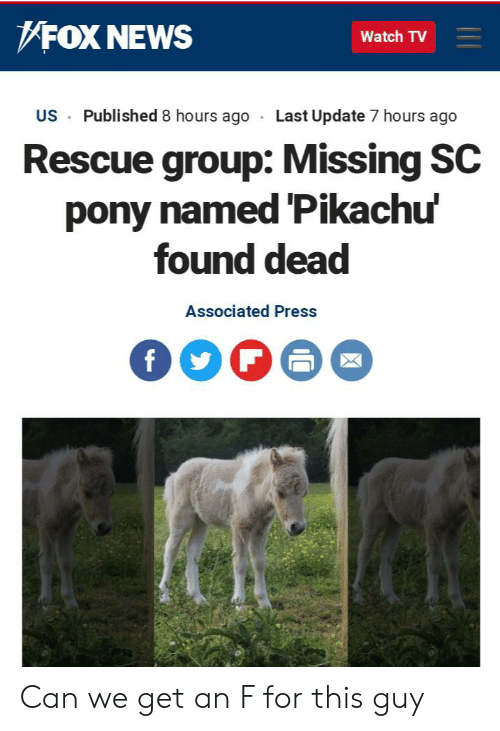 News, Pikachu, and Reddit: FOX NEWS  Watch TV  Published 8 hours ago  Last Update 7 hours ago  US  Rescue group: Missing SC  pony named Pikachu'  found dead  Associated Press Can we get an F for this guy