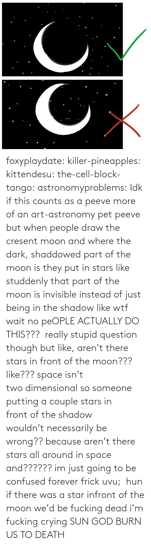 Frick: foxyplaydate: killer-pineapples:  kittendesu:  the-cell-block-tango:  astronomyproblems:  Idk if this counts as a peeve more of an art-astronomy pet peeve but when people draw the cresent moon and where the dark, shaddowed part of the moon is they put in stars like studdenly that part of the moon is invisible instead of just being in the shadow like wtf  wait no peOPLE ACTUALLY DO THIS???   really stupid question though but like, aren't there stars in front of the moon??? like??? space isn't two dimensional so someone putting a couple stars in front of the shadow wouldn't necessarily be wrong?? because aren't there stars all around in space and?????? im just going to be confused forever frick uvu;   hun if there was a star infront of the moon we'd be fucking dead  i'm fucking crying    SUN GOD BURN US TO DEATH