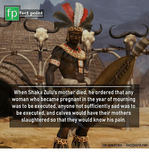 Memes, Pregnant, and Sad: fp  fact point  When Shaka Zulu's mother died, he ordered that any  woman who became pregnant in the year of mourning  was to be executed, anyone not sufficiently sad was to  be executed, and calves would have their mothers  slaughtered so that they would know his pain.  for sources factpoint.net