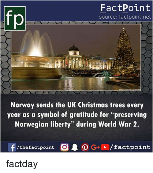 """christmas trees: fp  FactPoint  source: factpoint.net  Norway sends the UK Christmas trees every  year as a symbol of gratitude for """"preserving  Norwegian liberty"""" during World War 2.  /thefactpoint O factday"""