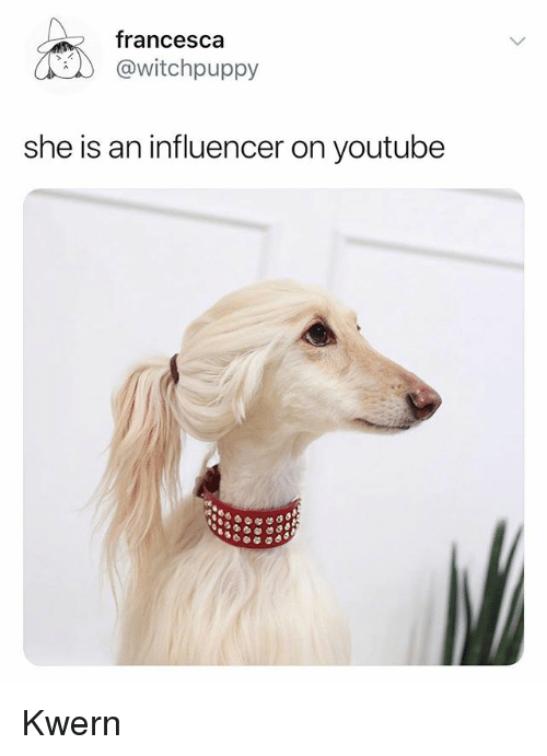 youtube.com, She, and Francesca: francesca  @witchpuppy  she is an influencer on youtube Kwern