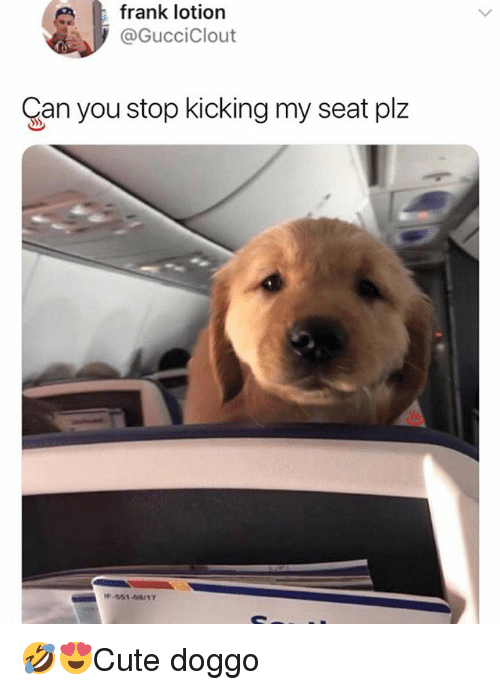 Memes, 🤖, and Doggo: frank lotion  @GucciClout  Can you stop kicking my seat plz 🤣😍Cute doggo