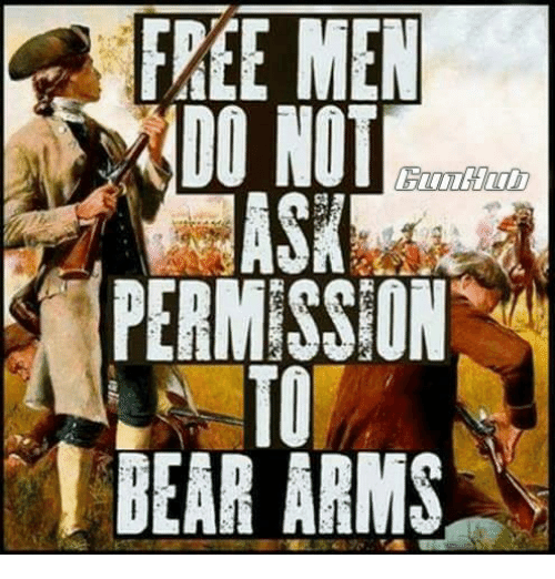 Memes, Bear, and Free: FREE MEN  DO NOT  TO  BEAR ARMS