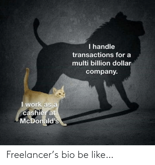 bio: Freelancer's bio be like…